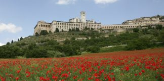 Assisi - wine tour in Umbria- Italy Tours with Discover your Italy